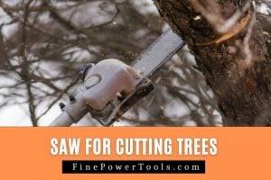 Cutting tree using power saw