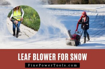 Leaf Blower for Snow