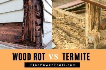 Wood Rot vs Termites