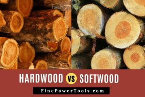 Difference between Hardwood vs Softwood